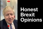 Boris asked people their honest opinions about Brexit